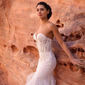 intricate lace mermaid dress